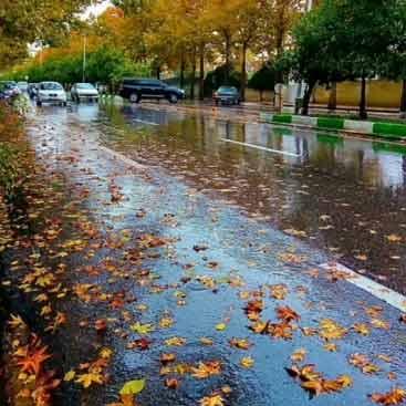 دانلود آهنگ حسین عامری چه خوشه بارون بیاد